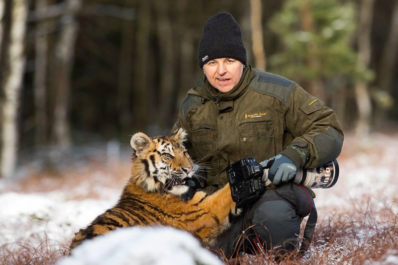 12/2016 Fuchs und Tiger im Schnee..