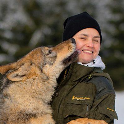 2/18 Wolf, Uhu, Schneeeule, Weisskopfseeadler, Schleiereule, Habicht